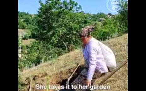 yt 224965 Azerbaijani lady make Building primitive oven and bake bread by Azerbaijani Lady 464x290 - Azerbaijani lady make Building primitive oven and bake bread by Azerbaijani Lady.