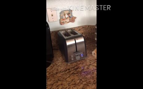 yt 238248 Lets watch a toaster cook my waffles cause I am hungry 464x290 - Let's watch a toaster cook my waffles cause I am hungry