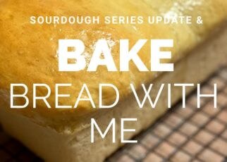yt 239496 Sourdough Starter Series Update Bake Bread With Me 322x230 - Sourdough Starter Series Update | Bake Bread With Me