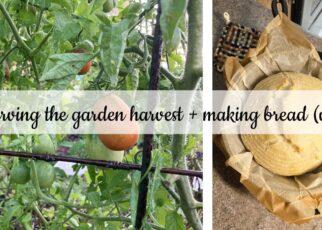 yt 240083 preserving the garden harvest making bread vlog 322x230 - preserving the garden harvest + making bread (vlog)