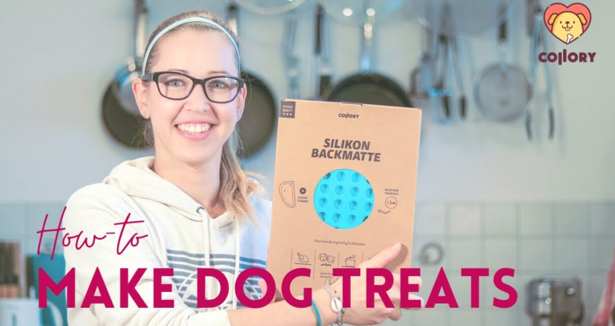 yt 250218 How To Bake Power Cookies For Your Dog 1210x642 - How To Bake Power Cookies For Your Dog
