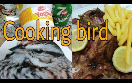 yt 271499 HOW TO COOK BIRD GRILLED 464x290 - HOW TO COOK #BIRD #GRILLED?